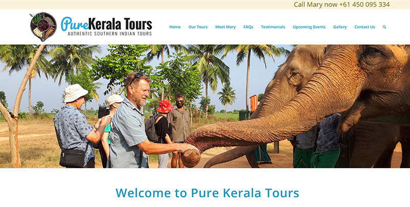Aztera Marketing website design and SEO for Pure Kerala Tours